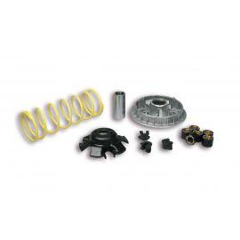 Variador Malossi Multivar para Kymco Grand Dink 250 01-09|People S 250 06-11|Xciting 250 04-05 (ver más modelos)